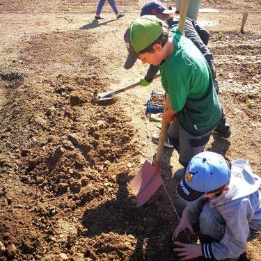 Projekt Schulacker - Montessori Schule